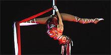 Circus Circus Show Acts